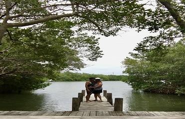 Don Pedro Island – Wild, Unspoiled Paradise